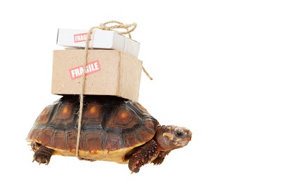 Slow delivery is normal