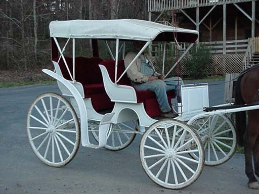 Hack chaise carriage 143 best horse drawn images on for Chaise carriage