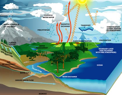 Water Cycle Wild And Wacky Weather