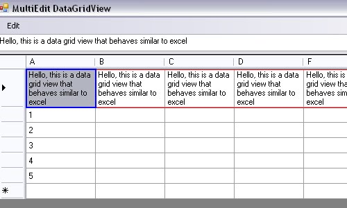 Multiple Cells Edit Data Grid View - Winnie Tsang
