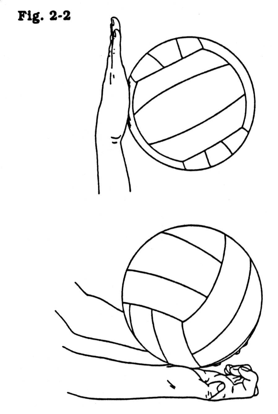 Volleyball What Skills Will Make You A Well Rounded Player Wjjms Physical Education Physical Education Volleyball Education