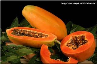 fructe exotice pentru slabit