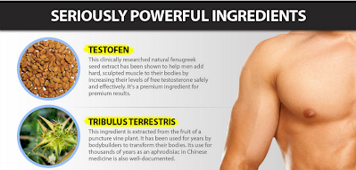 xt genix ingredients use