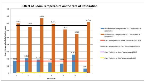 How does temperature affect metabolism?