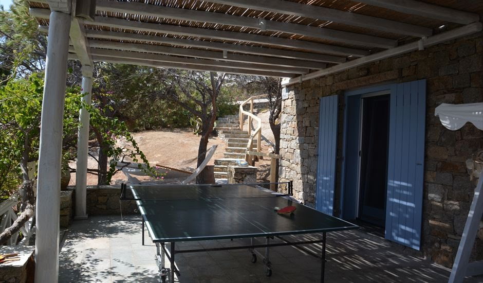 24. PING PONG TABLE