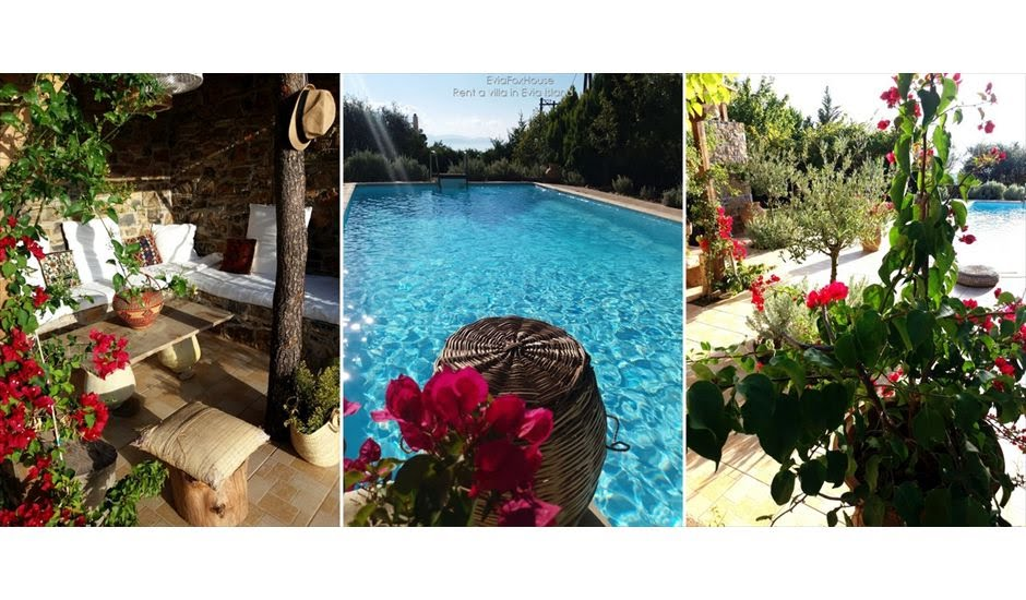 rent a house in evia with pool2